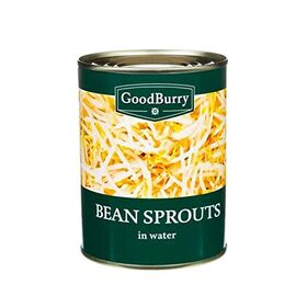 GoodBurry Bean Sprouts 560gm , (Pack of 4 Cans X 560gm Each)